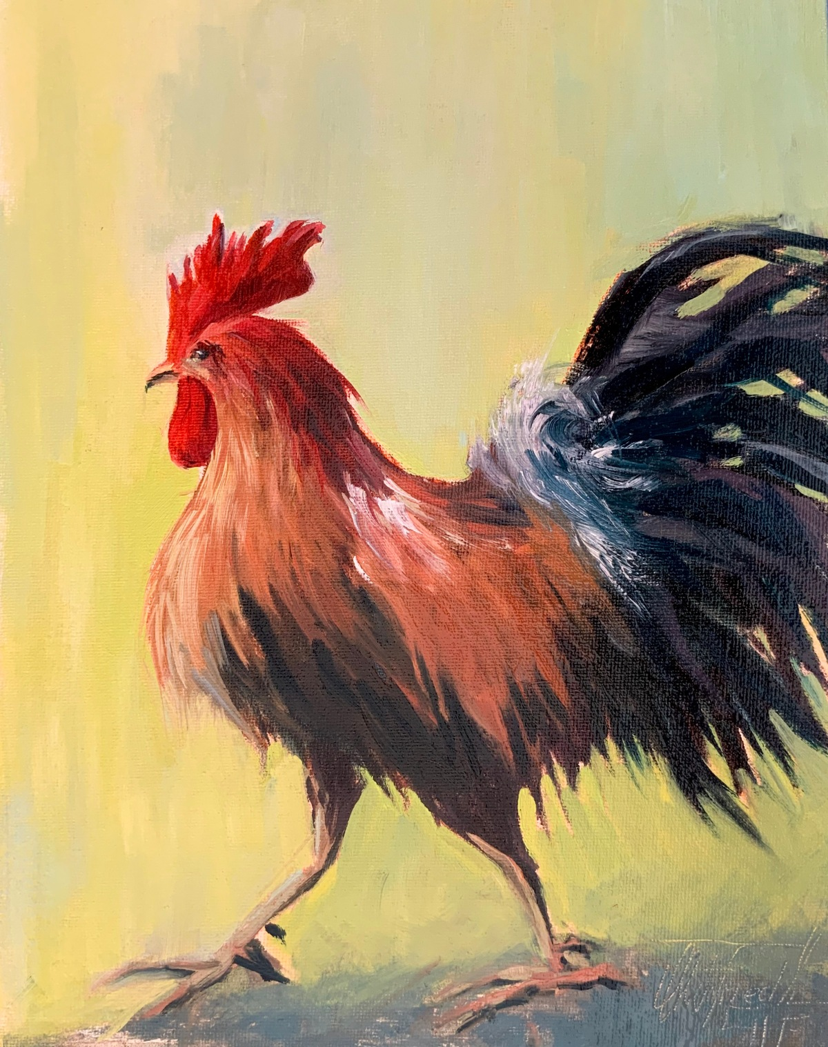 Rooster, 12x9 inches , oil on panel